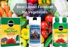 Best Liquid Fertilizer for Vegetables