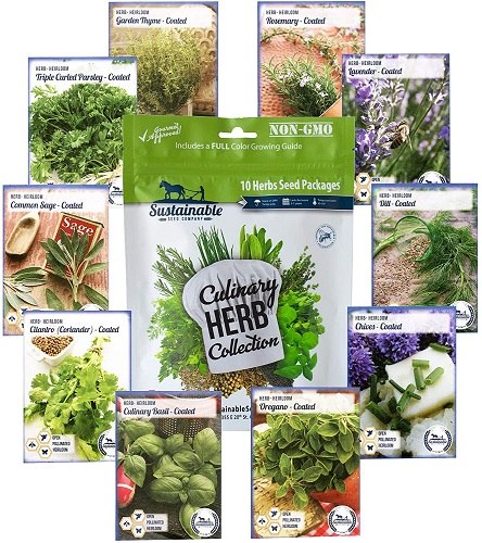 Culinary Herb Seeds Variety Pack - Outdoor &Amp; Indoor Herb Garden Kit