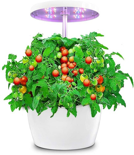 Hydroponics Growing System Smart Planter With Timed Auto Onoff