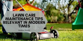 Lawn Care Maintenance Tips Relevant In Modern Times