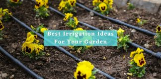 Best Irrigation Ideas For Your Garden