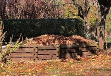 How To Turn Kitchen Waste Into A Compost