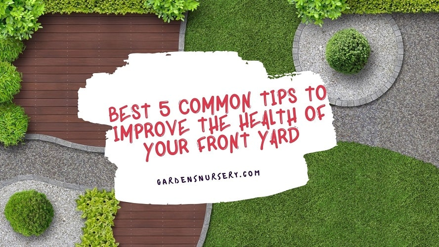 Best 5 Common Tips To Improve The Health Of Your Front Yard