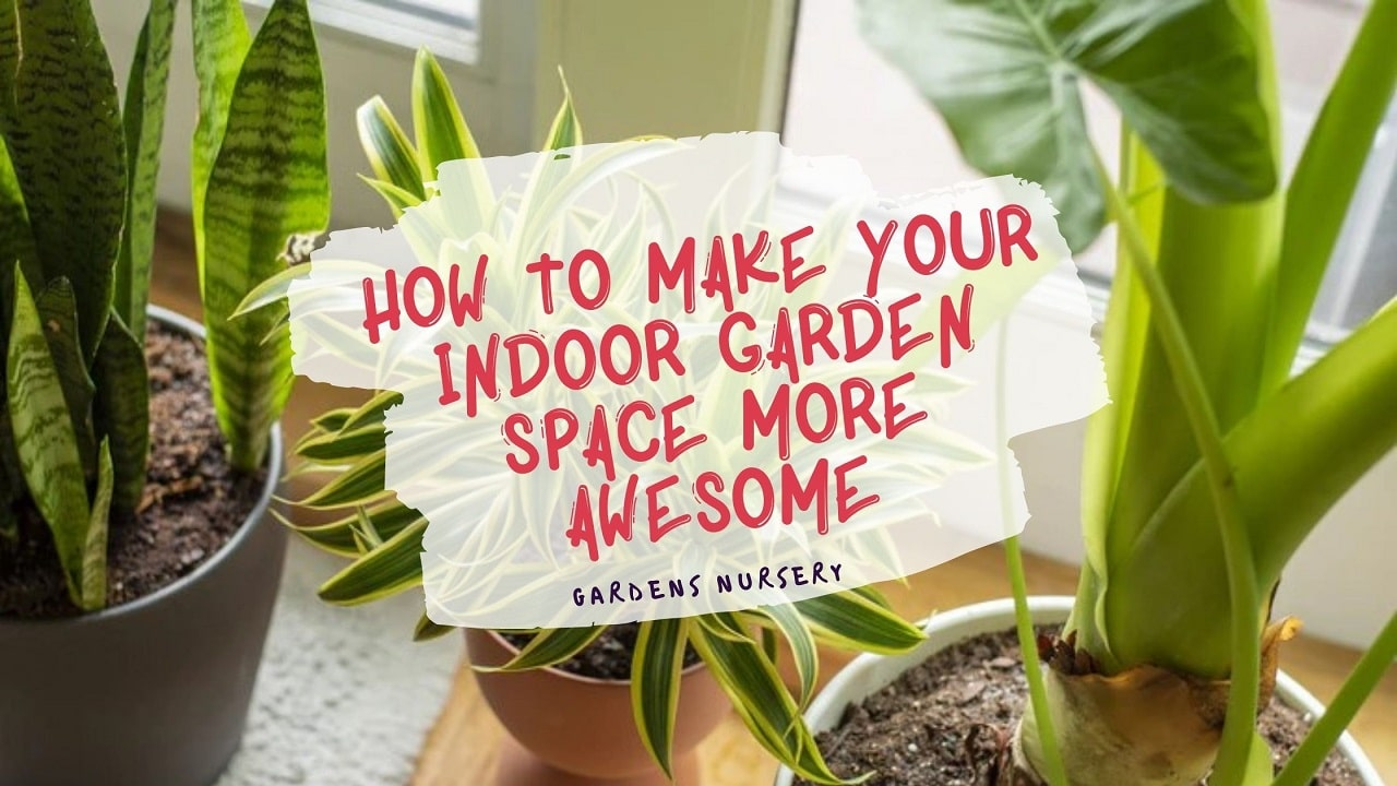 How To Make Your Indoor Garden Space More Awesome