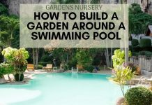 How to Build a Garden Around a Swimming Pool