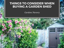 Things to Consider When Buying a Garden Shed