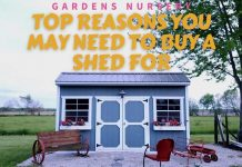 Top Reasons You May Need To Buy A Shed For