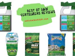 Best 07 Lawn Fertilizers Reviews