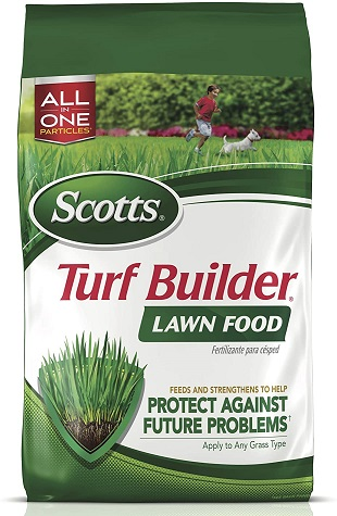 Lawn Fertilizer Feeds and Strengthens Grass to Protect Against Future Problems