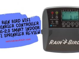 Rain Bird wifi Sprinkler Controller ST8I-2.0 Smart Indoor WiFi Sprinkler Review