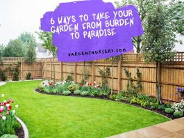 6 Ways to Take Your Garden from Burden to Paradise