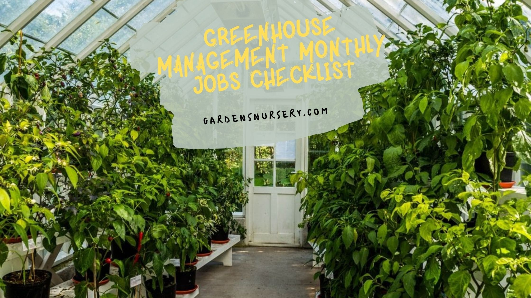 Greenhouse Management Monthly Jobs Checklist