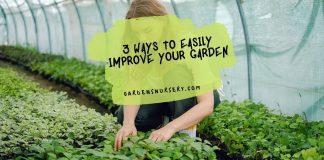 3 Ways to Easily Improve Your Garden