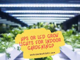 HPS or LED Grow Lights for Indoor Gardening