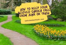 How To Keep Your Beloved Garden Free From Junk Or Trash