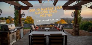 How to Maintain Your Outdoor Space Pristine