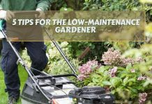 5 Tips for the Low-Maintenance Gardener