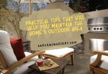 Practical Tips That Will Help You Maintain The Home's Outdoor Area