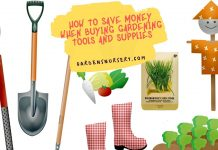 Save Money When Buying Gardening Tools