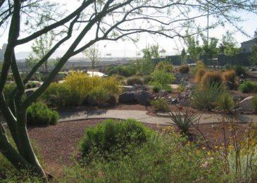 Acacia Demonstration Gardens