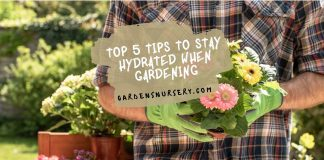 Top 5 Tips to Stay Hydrated When Gardening