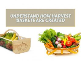Understand How Harvest Baskets are Created