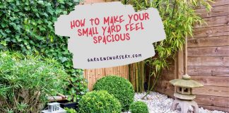 How To Make Your Small Yard Feel Spacious