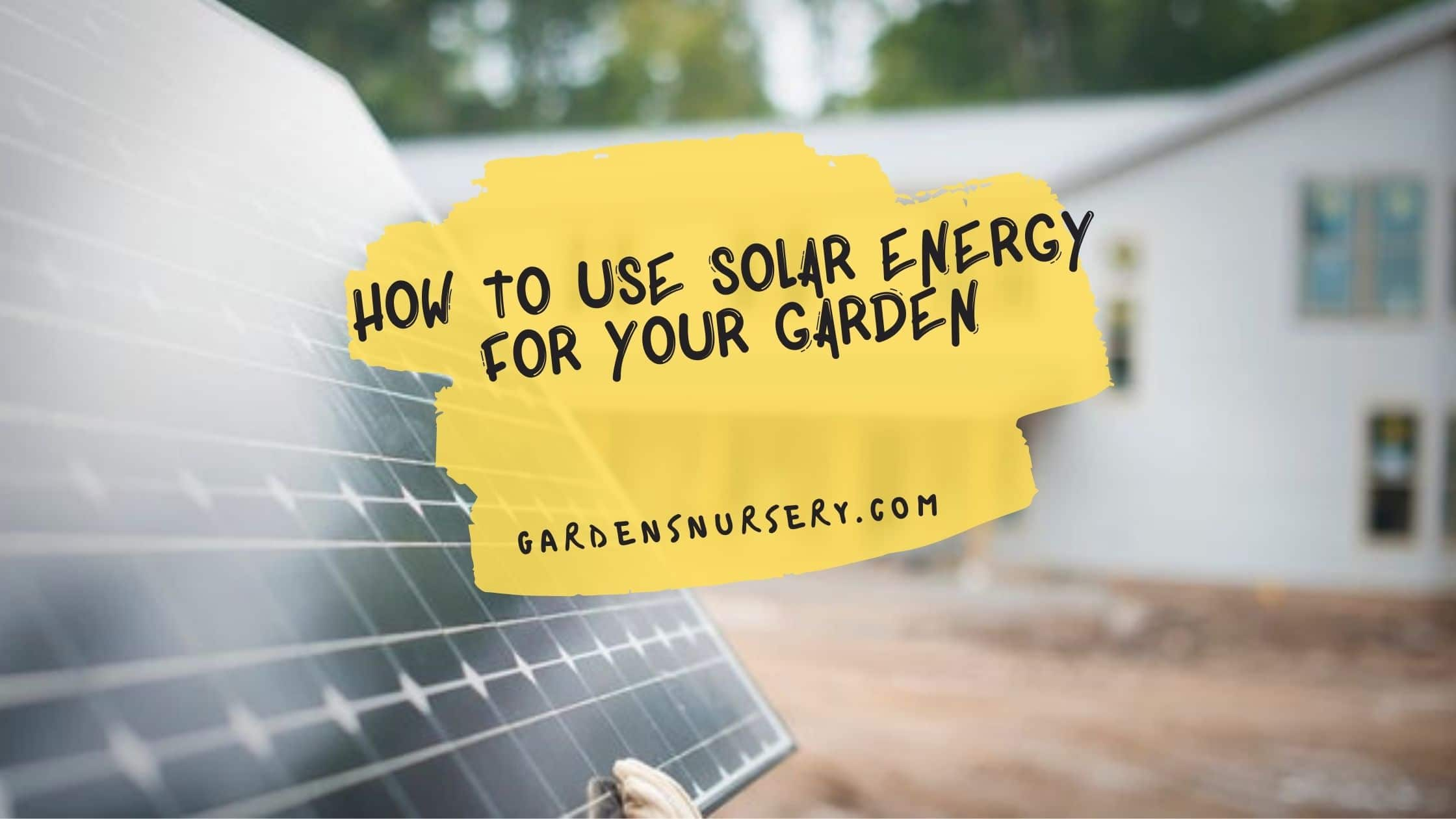 How to Use Solar Energy for Your Garden