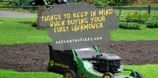 Things to Keep in Mind When Buying Your First Lawnmower