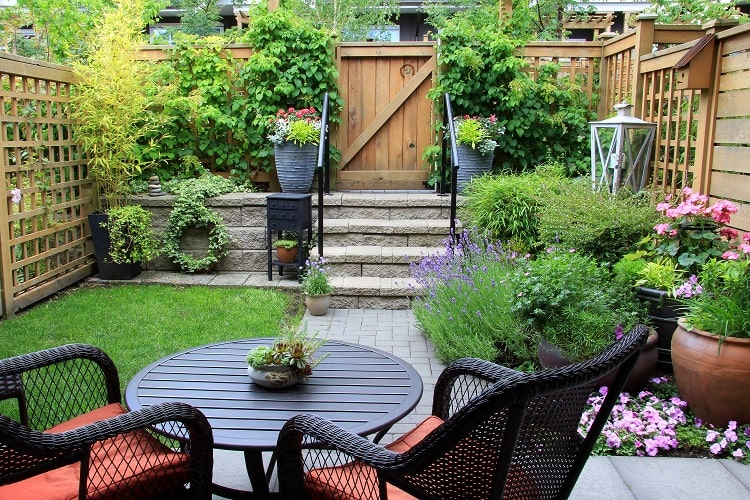 materials and plants in a small yard