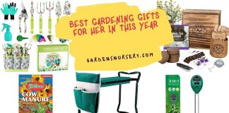 THE BEST 09 GARDENING GIFTS FOR HER IN THIS YEAR 2021