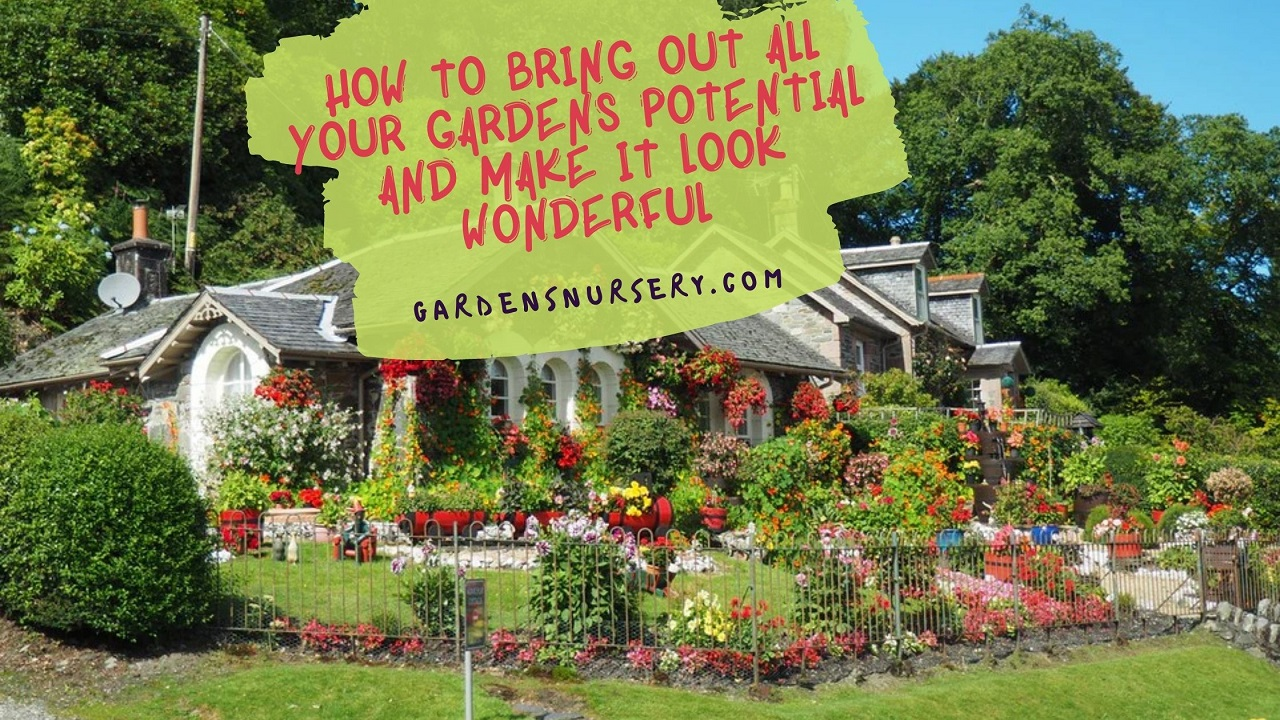How To Bring Out All Your Gardens Potential And Make It Look Wonderful