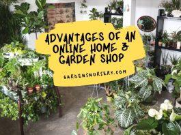 Advantages Of An Online Home & Garden Shop
