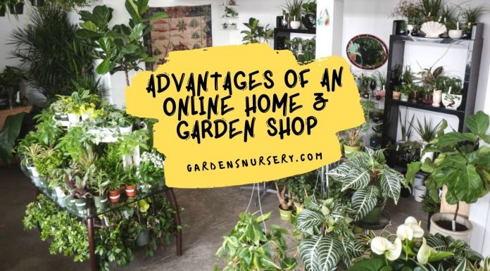 Advantages Of An Online Home &Amp; Garden Shop