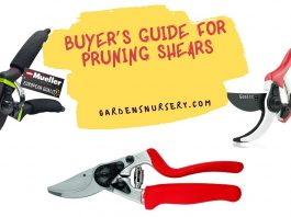 Buyer's Guide For Pruning Shears