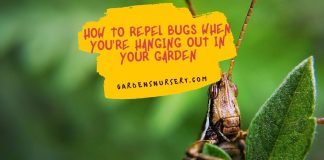 How To Repel Bugs When You're Hanging Out In Your Garden