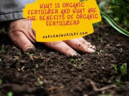 What is Organic Fertilizer and What are the Benefits of Organic Fertilizer