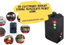 Do Electronic Rodent Strobe Repellents Really Work