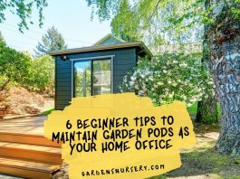 6 Beginner Tips To Maintain Garden Pods As Your Home Office