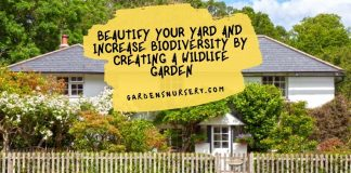 Beautify Your Yard And Increase Biodiversity By Creating A Wildlife Garden