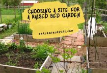Choosing a Site For a Raised Bed Garden