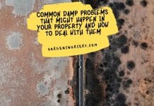 Common Damp Problems That Might Happen