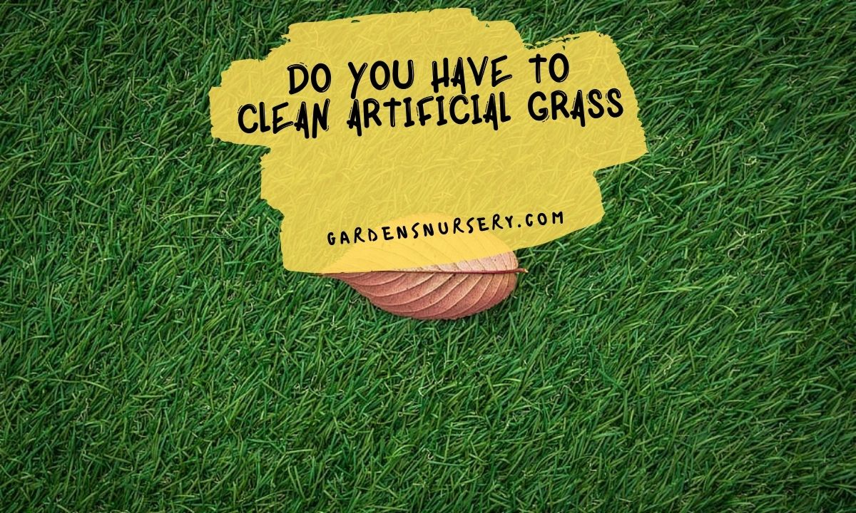 Do You Have to Clean Artificial Grass