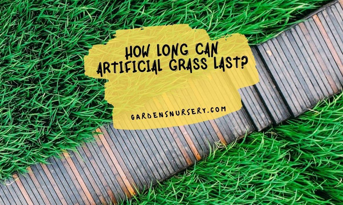 How Long Can Artificial Grass Last? Duration Artificial Grass