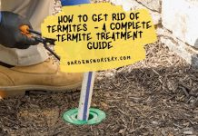 How to Get Rid of Termites - A Complete Termite Treatment Guide