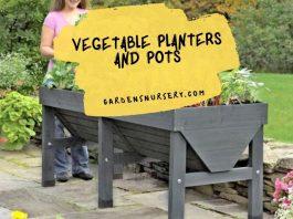 Planting WithVegetable PlantersAnd Pots