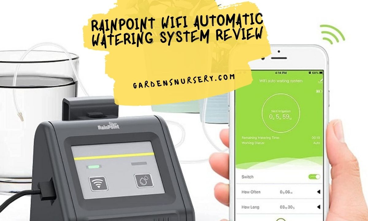 Rainpoint Wifi Automatic Watering System Review