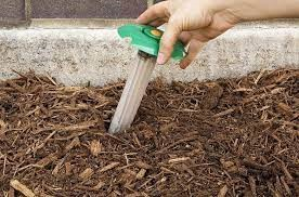 Use A Termite Bait System