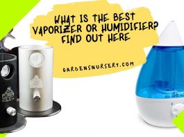 What Is The Best Vaporizer or Humidifier Find Out Here