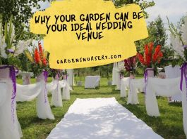 Why Your Garden Can Be Your Ideal Wedding Venue